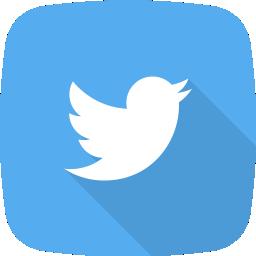 Webby Design Twitter Icon