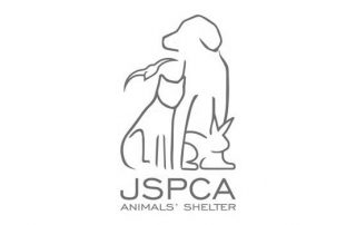 JSPCA Animale Shelter Jersey Logo